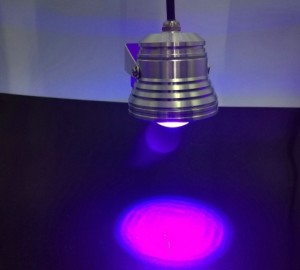 Led black light 10W spot