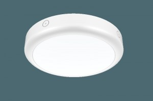 Plafond noodverlichting  Ø300mm 15W IP65