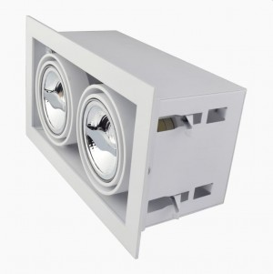 Recessed/Trimless fixture 2x AR70 | Full White | Adjustable